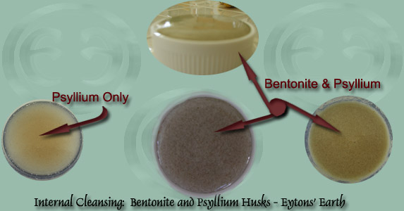 Healing Clays:  Bentonite and Psyllium